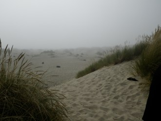 The coast was foggy and chilly, unlike the beaches we were used to. It was still very pretty.